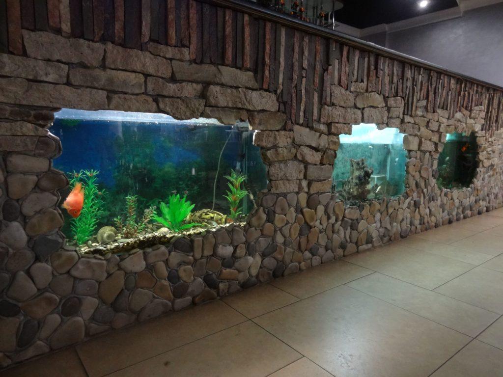 аквариум в кафе Брянск